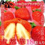 奈良県産いちご 古都華 特大粒18入り  「あすかルビー」を超えた奈良県生まれのいちごの優良品種  出荷予定期間:1月上旬〜2月上旬