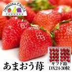 福岡産あまおう24〜30粒ギフト箱(贈答用)
