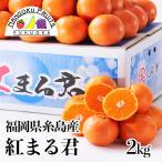 ショッピング予約 福岡県糸島産みかん 紅まるくん2.5kg