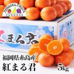福岡県糸島産みかん 紅まるくん5kg