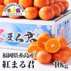 福岡県糸島産みかん 紅まるくん10kg