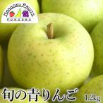 長野・青森産りんご・王林20玉