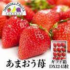 福岡産 あまおう苺 12-15粒ギフト箱