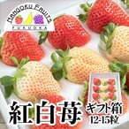福岡・佐賀産 紅白いちご (あまおう&白いちご)ギフト箱(12〜15粒)