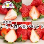 福岡・佐賀産紅白苺ギフト箱(12-15粒)
