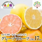 ショッピングフルーツ 送料無料 フロリダ産グレープフルーツ食べ比べ10玉