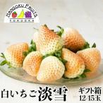 福岡産・白いちご淡雪ギフト箱