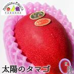 宮崎産完熟マンゴー・太陽のタマゴ3L1玉