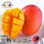宮崎産完熟マンゴー2L1玉