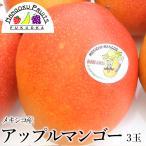 メキシコ産アップルマンゴー(ドン・ルイス)3玉