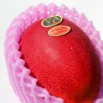 宮崎産完熟マンゴ−・太陽のタマゴ2L1玉