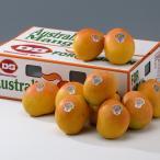 オーストラリア産 ピーチマンゴー10-12玉・送料無料¥11,880