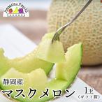 送料無料¥4,980 静岡産マスクメロン1玉ギフト箱