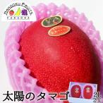 宮崎産完熟マンゴー・太陽のタマゴ2L2玉