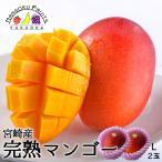 宮崎産完熟マンゴーL2玉