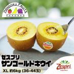 奇异果 - ニュージーランド産ゼスプリ・ゴールドキウイ大22玉