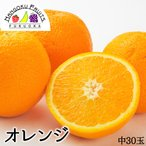 アメリカ産ネーブルオレンジ中30玉送料無料¥3,780