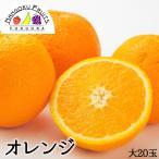 アメリカ産ネーブルオレンジ大20玉・送料無料¥3,480