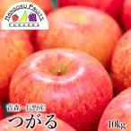 長野・青森産 つがる林檎 10kg箱(36〜40玉)