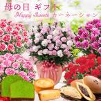 母の日 2021 プレゼント カーネーション 鉢植えと お菓子のセット 選べる 花とスイーツ 抹茶ケーキや函館チーズタルト