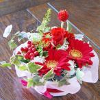 森の赤いフラワーケーキ 生花 プレゼント 母の日 父の日 誕生日 結婚記念日 結婚祝い 送料無料