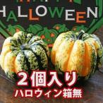 ハロウィン かぼちゃ 恐竜の卵 カーニバル 2個入り 箱無し カボチャ 生かぼちゃ 飾り ハロウィンカボチャ インテリア オブジェ 置物 玄関