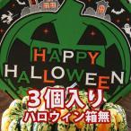 ハロウィン かぼちゃ 恐竜の卵 カーニバル 3個入り 箱無し カボチャ 生かぼちゃ 飾り ハロウィンカボチャ インテリア オブジェ 置物 玄関