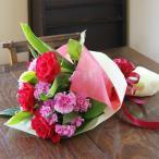 薔薇 カーネーション 赤系 花束 生花 プレゼント 花ギフト ひな祭り 母の日 卒業 画像 送料無料