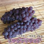 葡萄 ぶどう ブドウ 訳ありキングデラ 2kg 5〜7房入り山形市本沢産