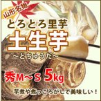 里芋 さといも 山形 秀 A品 M 〜 S サイズ 5kg 土生芋 とちゅうだ 土付き 皮付き サトイモ 我家で採れた 里芋 山形産 送料無料