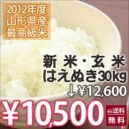 送料無料 米 はえぬき 玄米 30kg 2017 10kg 5kg 無洗