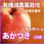 桃 白桃  送料無料 山形の桃 あかつき 白桃 秀3kg7個〜9個 満杯詰 8月10日頃〜8月15日頃