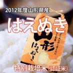 【送料無料】安心安全!特別栽培米! 24年度産 山形県産 はえぬき(白米)10kg