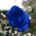 青い薔薇 青いバラ プレゼント 花束 追加用 1本 単品購入不可 ブルーローズ 青バラ ローズ バラ 青 誕生日 花言葉
