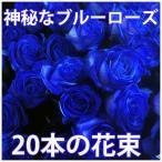 青いバラ ブルーローズ 花束 20本 カスミ草 青い薔薇 青 ブルー