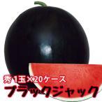 スイカ 種なしすいか ブラックジャック 秀 6〜7kg 1玉入 20ケース 尾花沢スイカ 尾花沢 甘い