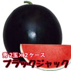 スイカ 種なしすいか ブラックジャック 秀 6〜7kg 2玉入 2ケース 尾花沢スイカ 尾花沢 甘い