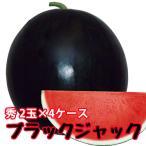 スイカ 種なしすいか ブラックジャック 秀 6〜7kg 2玉入 4ケース 尾花沢スイカ 尾花沢 甘い