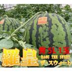 尾花沢スイカ 袖崎の大玉スイカ 祭りばやし 777 スリーセブン 秀3L〜4L 1玉 山形県村山市産 送料無料