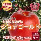 りんご リンゴ ジョナゴールド 10kg 訳あり ご家庭用 満杯詰め 有機減農薬栽培 朝日町和合平 葉取らずりんご 送料無料
