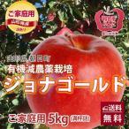 りんご リンゴ ジョナゴールド 5kg  訳あり ご家庭用 満杯詰め 有機減農薬栽培 朝日町和合平 葉取らずりんご 送料無料