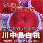 桃 送料無料 川中島白桃 中玉 2.5kg 9 10玉  有機減農薬栽培 ※発送期間は 8月28日頃〜9月7日頃