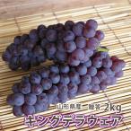 【送料無料】高級葡萄(ぶどう)キングデラ 秀品 2kg(5〜7房入り)