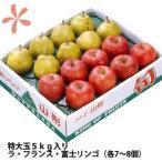 りんご ラフランス セット 送料無料 山形 ふじりんご ラ フランス 特大玉 贈答用 5kg 各7〜8個入り 丸勘山形 リンゴ ふじ 果物 蜜入り