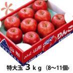 りんご ふじりんご フジリンゴ 送料無料 山形 特大玉 ふじりんご 蜜入り 贈答用 3kg 8〜11個入り 丸勘山形 リンゴ ふじ 果物