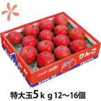 りんご ふじりんご フジリンゴ 送料無料 山形 特大玉 ふじりんご 蜜入り 贈答用 5kg 12〜16個入り 丸勘山形 リンゴ ふじ 果物