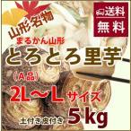 里芋 5kg 秀 A品 2L 〜 L サイズ さといも 山形産 まる勘 サトイモ 芋煮 煮物 土付き 皮付き 種芋 送料無料