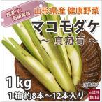 送料無料 山形産 マコモタケ 真菰筍 1kg 約8本〜12本  生でも食べられる自然健康フルーツ野菜