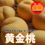 桃 送料無料 黄金桃 金桃 大玉 2.5kg 8〜9玉 有機減農薬 栄養周期栽培 ※発送期間は 8月28日頃〜9月7日頃