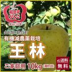 りんご 王林 おうりん 10kg ご家庭用 満杯詰め 有機減農薬栽培 朝日町和合平 葉取らずりんご 訳あり 送料無料